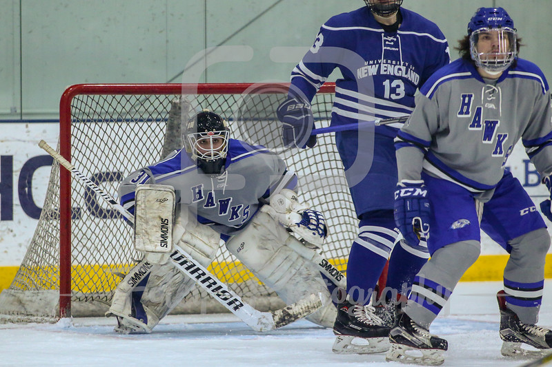 Becker College Hawks goaltender Richard D'Ortenzio (31)