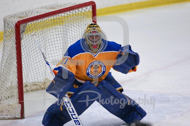 Western New England Golden Bears Kevin Gollmer (31)