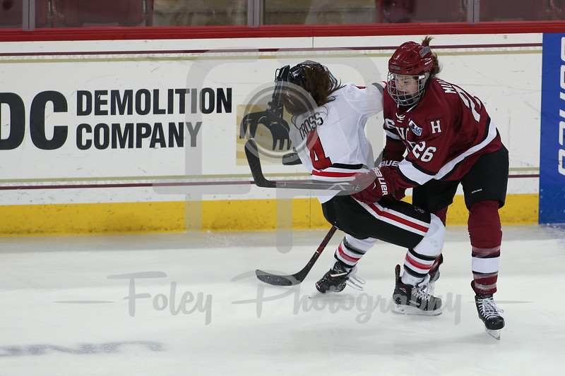Harvard vs Northeastern