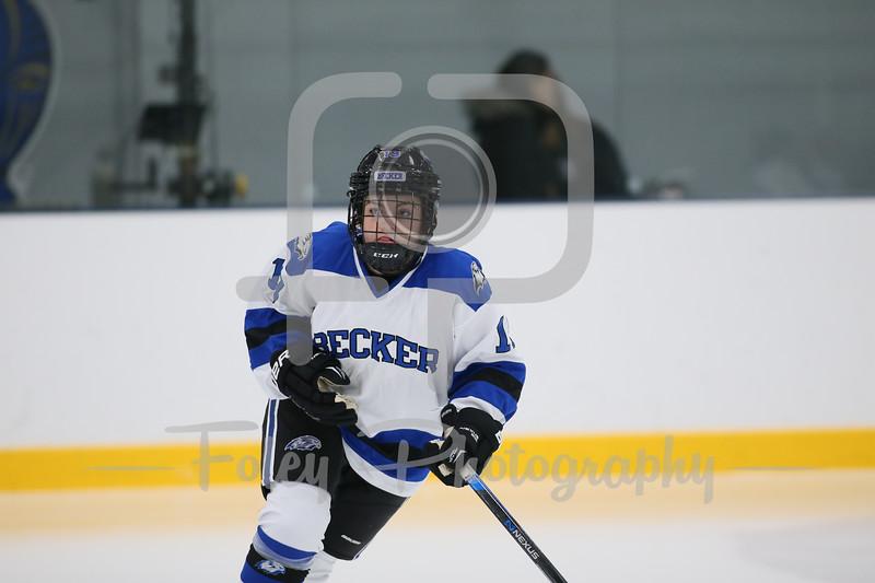 Becker College Hawks defenseman Cameron Payne (19)