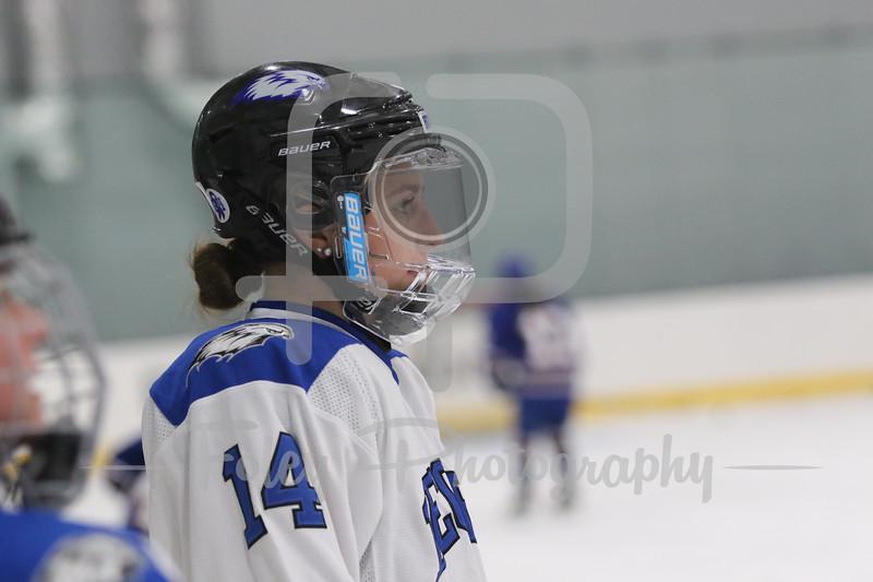 Becker College Hawks forward Catherine McShera (14)