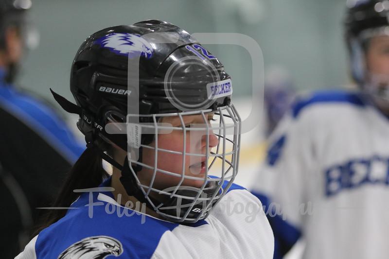 Becker College Hawks forward Brianna Luciani (12)