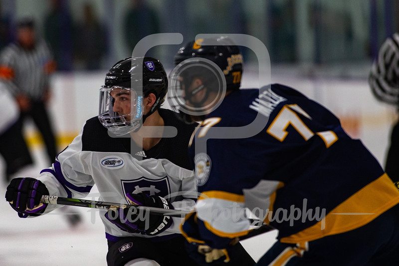 Canisius at Holy Cross