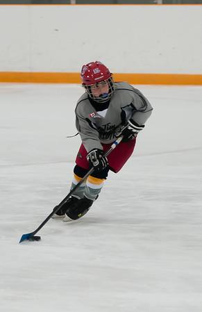 Coyotes Novice Hockey - 2013-14