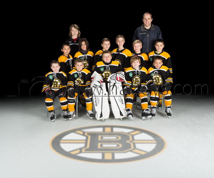 2015-02-18 Frisco Mite Bruins