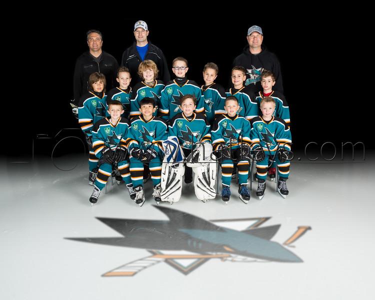 2015-03-20 FrMite Sharks Bertsch