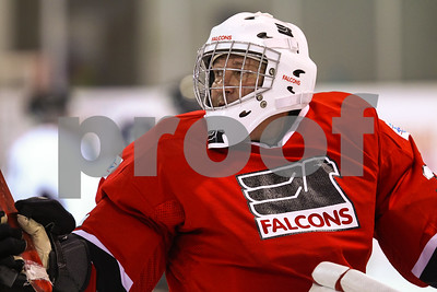 0413-0940-FB-G.L.A.S.A.Falcons-TexasSledHockey