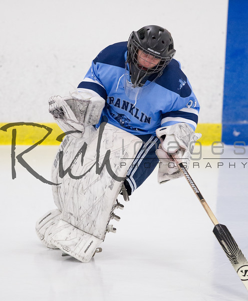 JANUARY 29, 2014, FOXBORO, MA: Franklin High School Panthers defeated the Mansfield High School Hornets 3-2 on January 29, 2014.