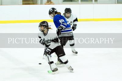 Langdon Girls Hockey vs. Fargo 2-5-12