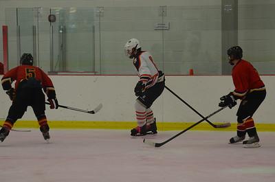 Hockey 2013