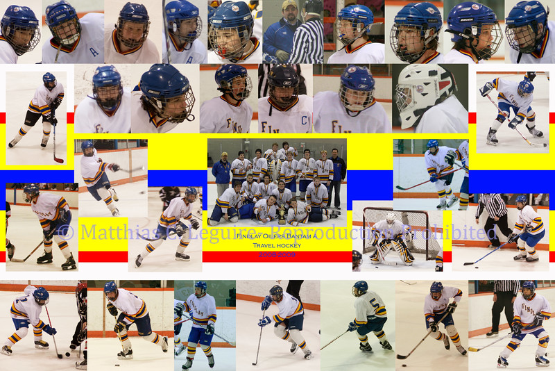 Hockey Final Version
