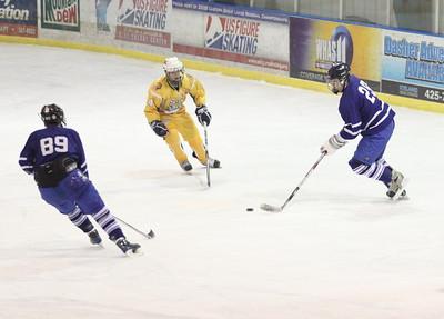LC vs St X Varsity Hockey