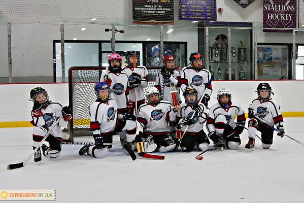 Stealth Hockey