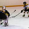 Atom AA Scarborough Young Bruins vs Westhill Goldenhawks, November 18, 2011