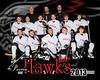 Hawks Team copy