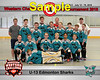 u13 Edmonton Sharks_edited-2