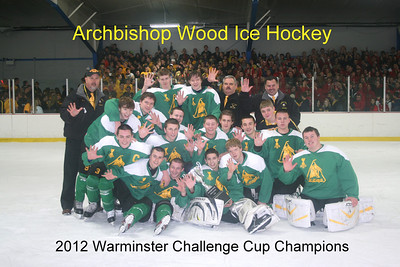 Wood Hockey 2013