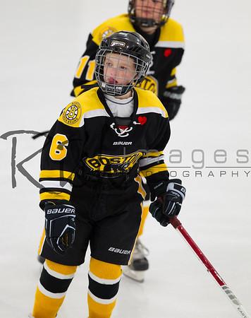 Boston Jr. Bruins vs South Shore Kings-Tier I Pee Wee Minor 2002 on Sunday, November 17, 2013.