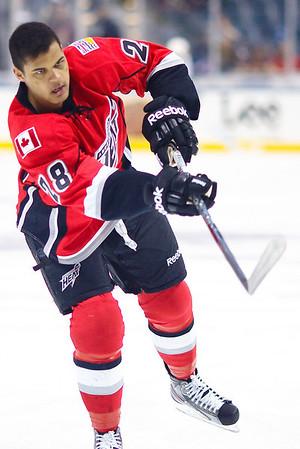 AHL 2011/12 Playoffs