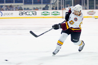 2012 February 15 Grand Rapids Griffins at Chicago Wolves