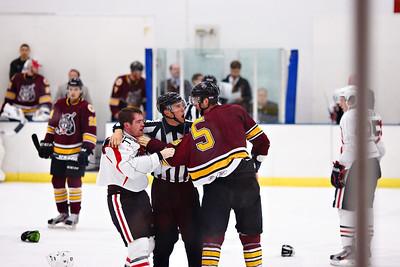AHL 2013/14