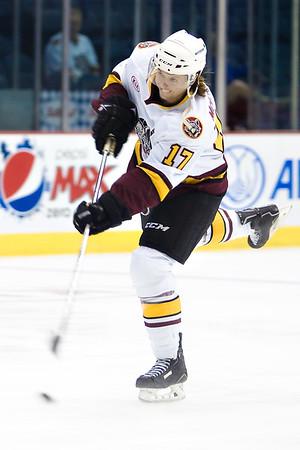AHL 2014/15
