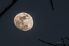 Preparation photo of the moon prior to the big MOON ECLIPSE Wednesday morning