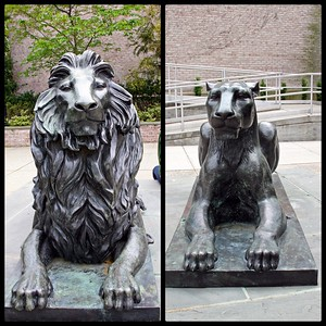 Willie and Katie Pride are the Mascots for Hofstra University