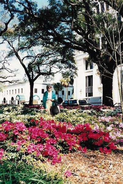 HWP2189 Savannah