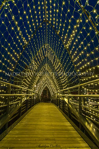 Holiday Tunnel of Lights