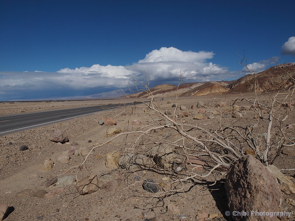 Desert day in Death Valley