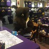 Damien signing holiday card at bookstore stress less student event