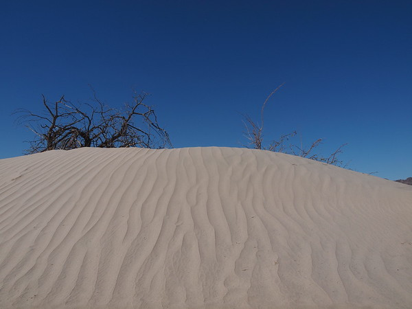 A miniature dune is starting by the side of the road, Mohave National Preserve, Baker, CA
