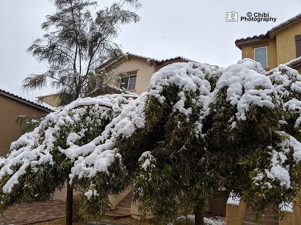 Snow in Las Vegas 2019