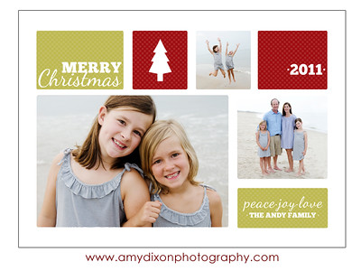 Holiday Cards 2011