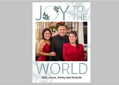 Joy to the World Blue Front
