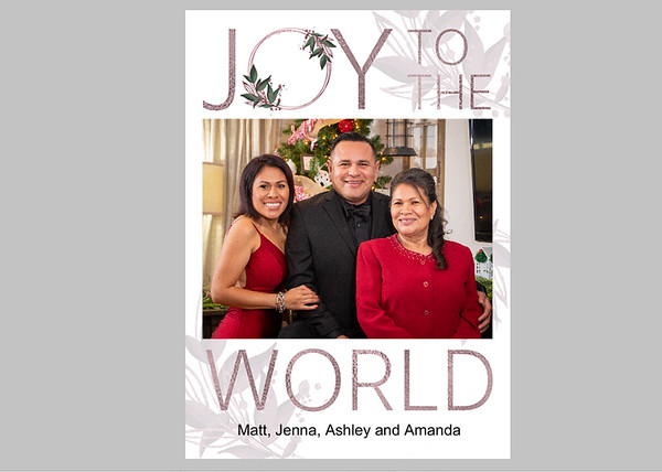 Joy to the World Blush Front