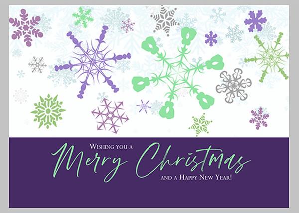 Snowflakes Purple Front