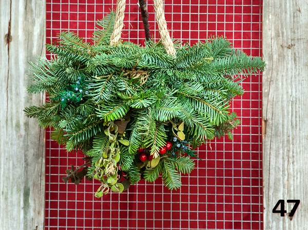"""#47 - 12"""" kissing ball made with locally harvested mistletoe, fresh PNW greens, and sisal hanger."""