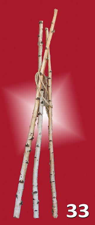 #33 - Birch branches. Sold in bundles of 3 pieces at approximately 5' lengths. Great for decorating your garden center or sold for DIY.