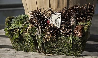 Moss Harvest Basket of Cones