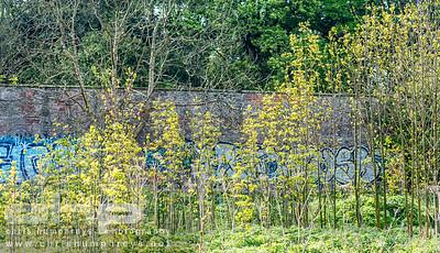20140514 Edmonstone Estate 035