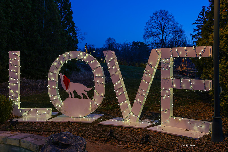 LOVE Abingdon Christmas