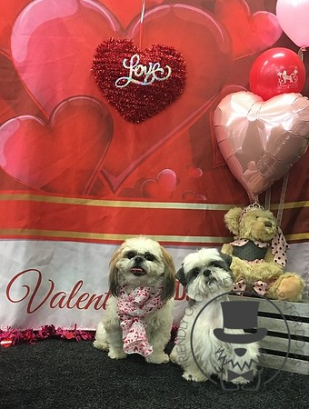 Valentines Party 2018