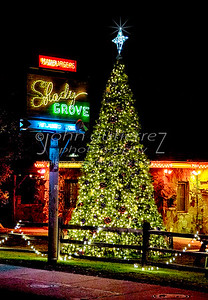 Shady Grove Christmas Tree-1