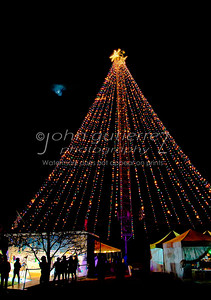Zilker Christmas Tree-02