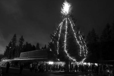Tree Lighting and Wassail 2004