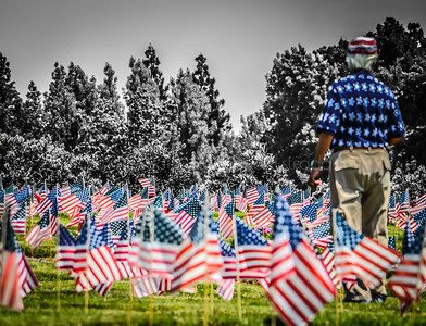 Memorial Day: Remembering Our Brave