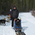 Dog Sledding, with Diesel eating his harness