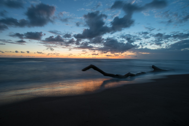 Early morning in Tortuguero. Sunrise at the ocean. Piece of driftwood - Costa Rica